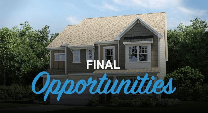 Final Opportunities