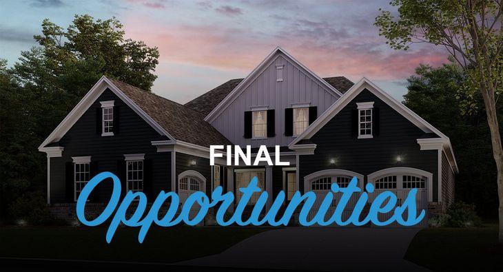 Final opportunities!