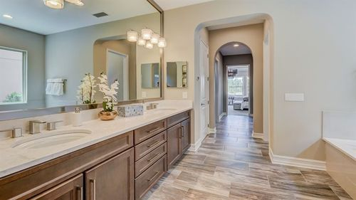 Bathroom-in-CLAYBOURNE-at-The Promenade at Lake Park - Lake Park 70s-in-Lutz
