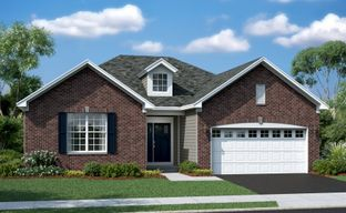 Raintree Village - Single Family by Lennar in Chicago Illinois