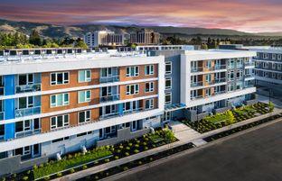 Townhome C.1 - Avenue One - Lexington: San Jose, California - Lennar