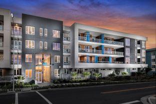Townhome A - Avenue One - Lexington: San Jose, California - Lennar