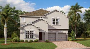 Peabody - Arden Park North - Manor Collection: Ocoee, Florida - Lennar