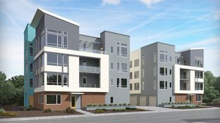 Residence A- Avery 1 - Foster Square: Foster City, California - Lennar