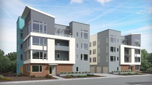 Residence C- Avery 1 - Foster Square: Foster City, California - Lennar