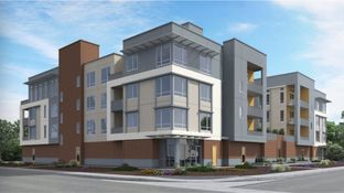 Residence C- Claremont - Foster Square: Foster City, California - Lennar