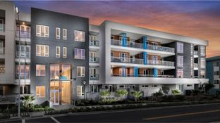 Residence 2A - Avenue One - Lexington: San Jose, California - Lennar