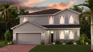 Independence - Arden Park North - Manor Collection: Ocoee, Florida - Lennar