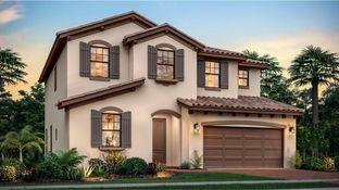Somerset - BellaSera - The Piazza Collection: Royal Palm Beach, Florida - Lennar