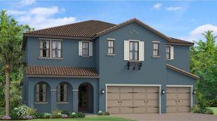Seabrook - Estancia - Ravello: Wesley Chapel, Florida - WCI
