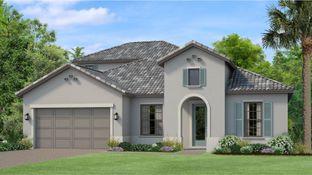 Fernandina - Estancia - Ravello: Wesley Chapel, Florida - WCI
