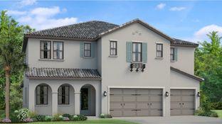 Seabrook - Cordoba - Cordoba Estates: Lutz, Florida - WCI