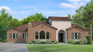 Julian - Cordoba - Cordoba Estates: Lutz, Florida - WCI