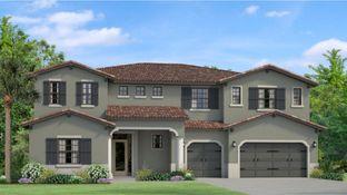 Ventura - Cordoba - Cordoba Estates: Lutz, Florida - WCI