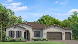 Avila - Tarramor - Tarramor Estates: Odessa, Florida - WCI