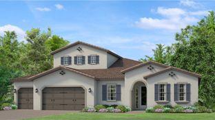 Amberly - Tarramor - Tarramor Estates: Odessa, Florida - WCI