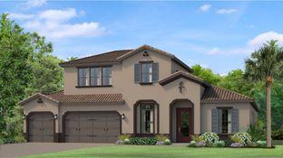 Solana - Tarramor - Tarramor Estates: Odessa, Florida - WCI