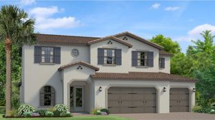 Daphne - Tarramor - Tarramor Estates: Odessa, Florida - WCI