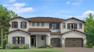 Ventura - Tarramor - Tarramor Estates: Odessa, Florida - WCI
