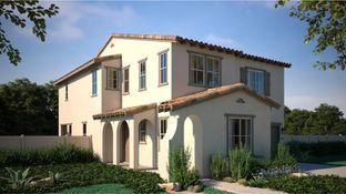 Residence 4 - Canopy Grove - Haven: Escondido, California - Lennar