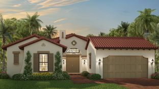 Cottonwood - Parkland Bay - Estates Collection: Parkland, Florida - WCI