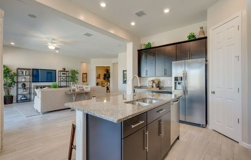 Kitchen-in-Revelation-Home Within a Home-at-Asante - Vision-in-Surprise