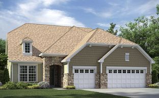 Tree Tops - Summit by Lennar in Charlotte South Carolina