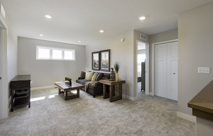 Living Area featured in the Lewis EI By Lennar in Minneapolis-St. Paul, MN