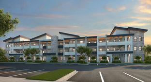 Oakwood - Park Central - Apex: Doral, Florida - Lennar