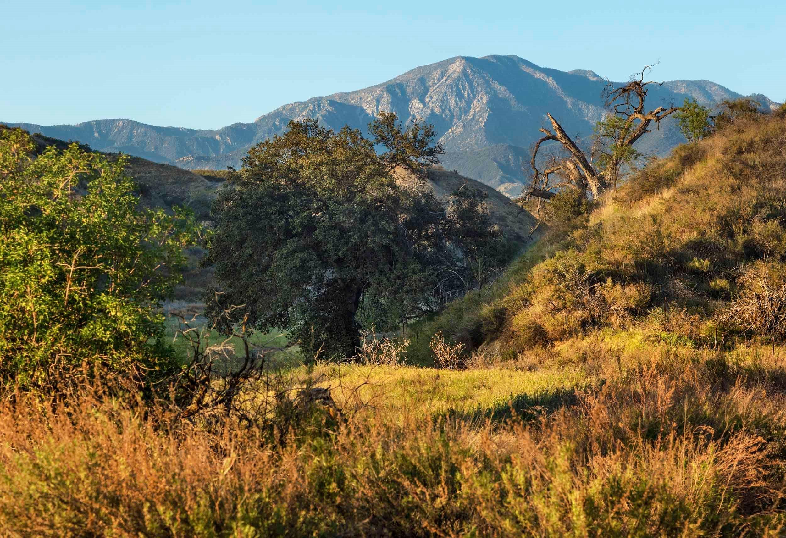'Summerwind Trails - Wildflower' by Lennar - Inland Empire in Riverside-San Bernardino