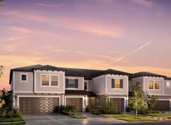 Constitution - Epperson - The Townhomes: Wesley Chapel, Florida - Lennar