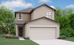 Touchstone - The Manors by Lennar in Tampa-St. Petersburg Florida