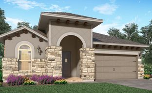 Kingwood-Royal Brook - Champions Patio and Icon Collections by Village Builders in Houston Texas