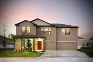 Cheyenne - Spencer Creek - The Executives: Ruskin, Florida - Lennar
