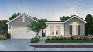 Sutter - Gossamer Grove - Homestead Series: Shafter, California - Lennar