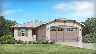 Bisbee Plan 3565 - Western Enclave - Arbor & Discovery: Phoenix, Arizona - Lennar