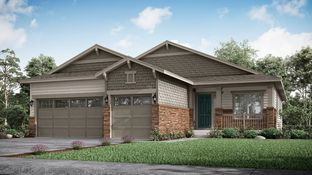 Newman - Heritage Todd Creek - The Heritage Collection: Thornton, Colorado - Lennar