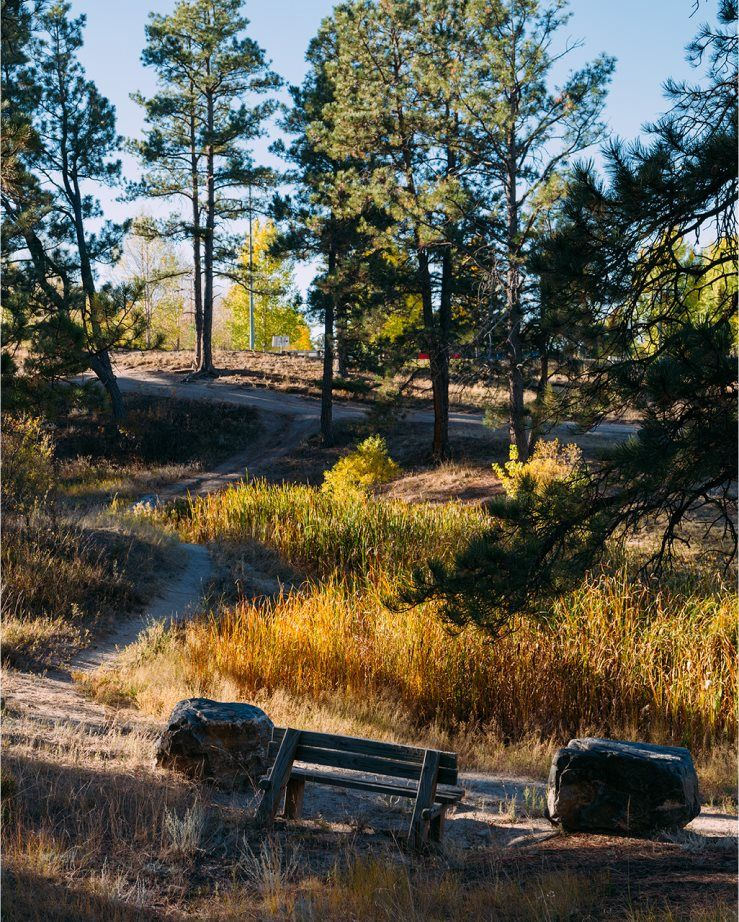 'Gold Creek Valley - The Monarch Collection' by Lennar - Colorado in Denver
