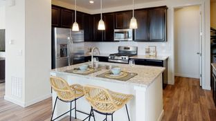 Vibrant - Mosaic - Paired Homes: Fort Collins, Colorado - Lennar
