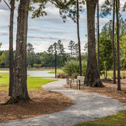 'Summers Corner - Azalea Ridge - Row Collection' by Lennar - Coastal Carolinas in Charleston