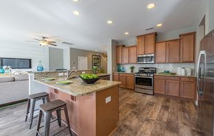 FANNING - Timber Trace - Arbor Collection: Summerville, South Carolina - Lennar