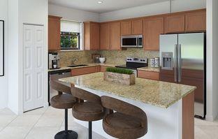 Emerson - Siena Estates: Miami, Florida - Lennar