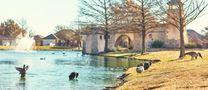Sendera Ranch Watermill by Lennar in Fort Worth Texas