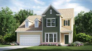 Elisha Basement - Millbridge - Meridian: Waxhaw, North Carolina - Lennar