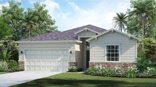 TREVI - Trailmark: Saint Augustine, Florida - Lennar