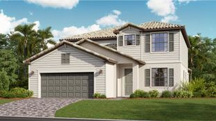 Amalfi - Arborwood Preserve - Executive Homes: Fort Myers, Florida - Lennar