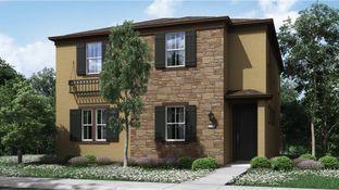 Residence 2185 - Belle Maison at Campus Oaks: Roseville, California - Lennar