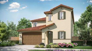 Residence 2365 - Corvara II at Campus Oaks: Roseville, California - Lennar