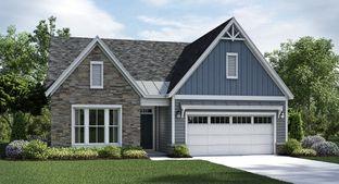 Camden Basement - Colonial Heritage - Colonial Heritage Manors: Williamsburg, Virginia - Lennar