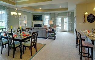 Camden - Colonial Heritage - Colonial Heritage Manors: Williamsburg, Virginia - Lennar
